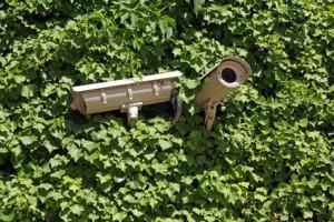 Das Grüne Recht: Videoüberwachung am Arbeitsplatz Urteil des LG Detmold