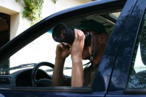 Das Grüne Recht Überwachung Privatdetektiv